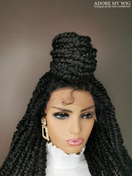 Twist Braids Hairstyle